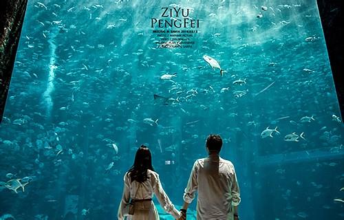 ZIYU&PENGFEI  |  三亚婚礼